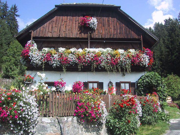 66 migliori immagini davanzali fioriti su pinterest - Immagini di giardini fioriti ...