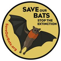 Save Our Bats. Bats are amazing critters.