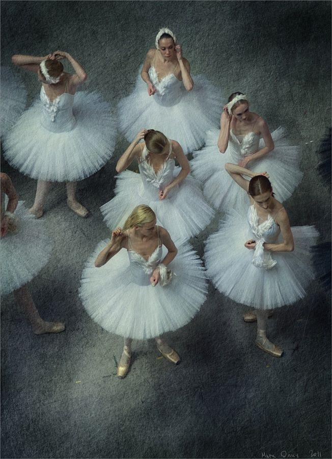 17 best images about Dance on Pinterest Sleeping beauty ballet - ballet dancer resume