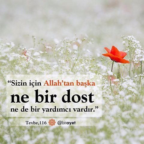 """""""Sizin için Allah'tan başka ne bir dost ne de bir yardımcı vardır."""" Tevbe│116. #birayet"""