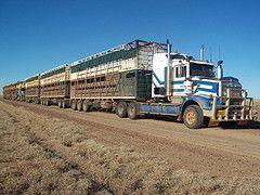 old cattle trucks | kenworth t650 (good old trucking) Tags: truck australia livestock ...