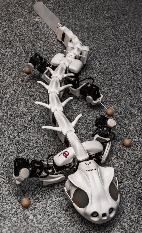 Futuristic Robot, Pleurobot: Multimodal Locomotion In A Bioinspired Robot. BioRob, EPFL, NCCR Robotics, Future Robots