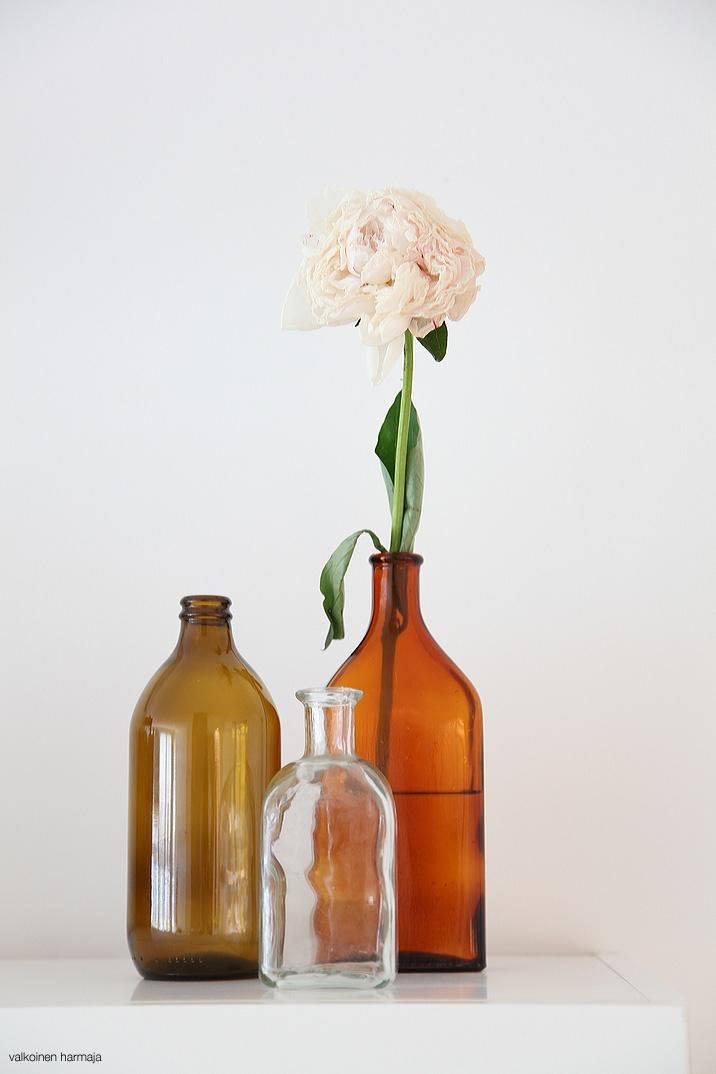 Pharmacy bottles as vases