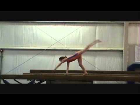 2013 - 2020 Level 3 Gymnastics Routines