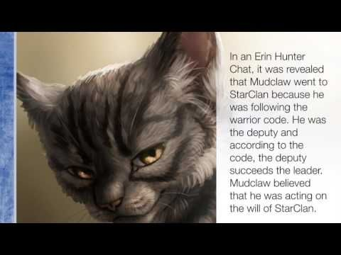 intresting warrior cat factspart 5spoil alert