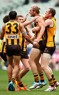 Hawks celebrate with Ryan Schoenmakers after one of his goals against St Kilda.  Hawks win by 145 points. (Round 7, 2014)
