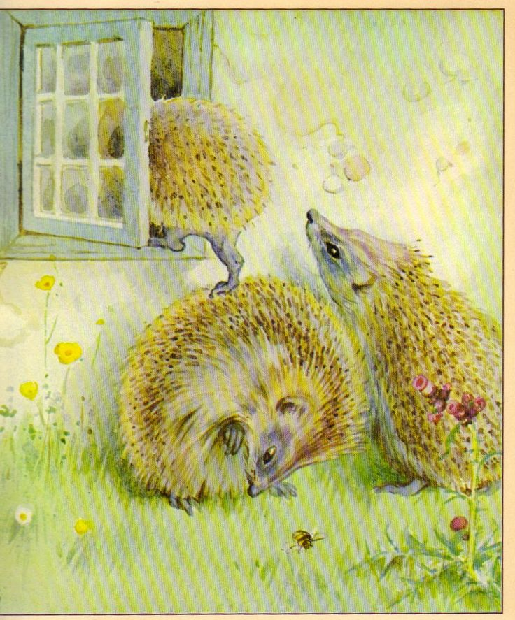 """The Hedgehog Feast"" by Edith Holden (https://www.etsy.com/listing/170178509/the-hedgehog-feast-by-edith-holden?ref=related-1)"