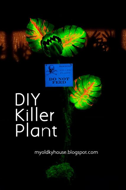 A quick guide to creating a DIY killer plant for Halloween : My Old Kentucky House Blog