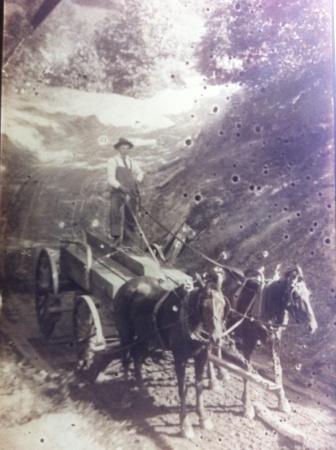 Pat Kirk hauling timber, Low Gap, Lincoln County, West Virginia, 1908-1920