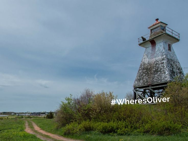 Since the late 1800s, lighthouses have been guiding ships to Canada's eastern shores. To this day many still maintain their original purpose, but lighthouses like the rear tower on Cape Tormentine have become a home for nesting birds. Oliver thinks the amazing view is the birds' main attraction. Find out more at: http://www.lighthousefriends.com/light.asp?ID=995