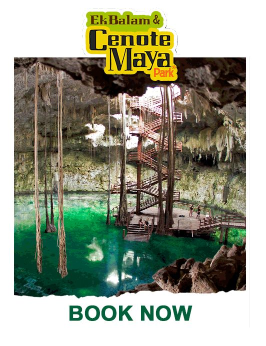Visit the incredible Cenote Maya Park and get great deals. Get tickets now and explore, dive and swim in Cenote Maya, the largest in Riviera Maya.