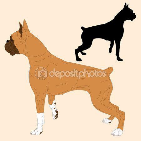 Боксер собака чорний силует реалістичні — Stock Illustration #107472972