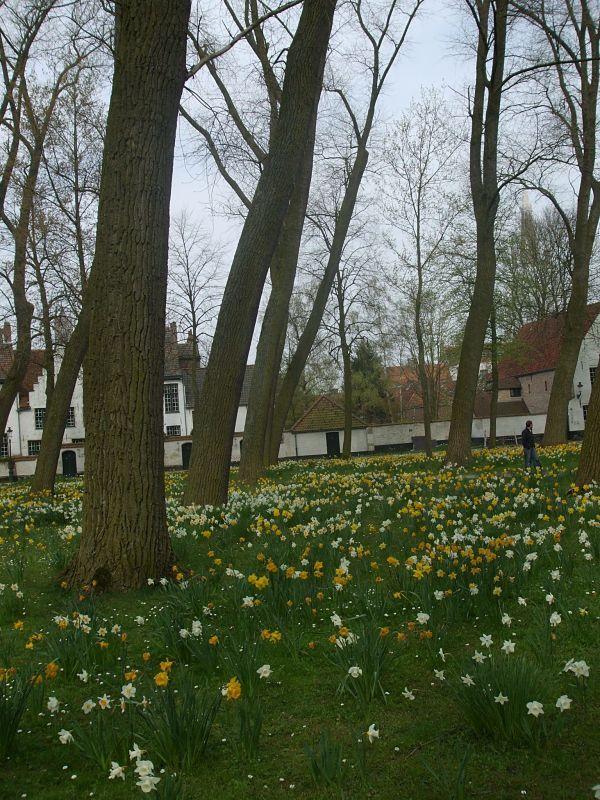 Un parque cuyo nombre no recuerdo.  Brujas en abril, anuncio de primavera
