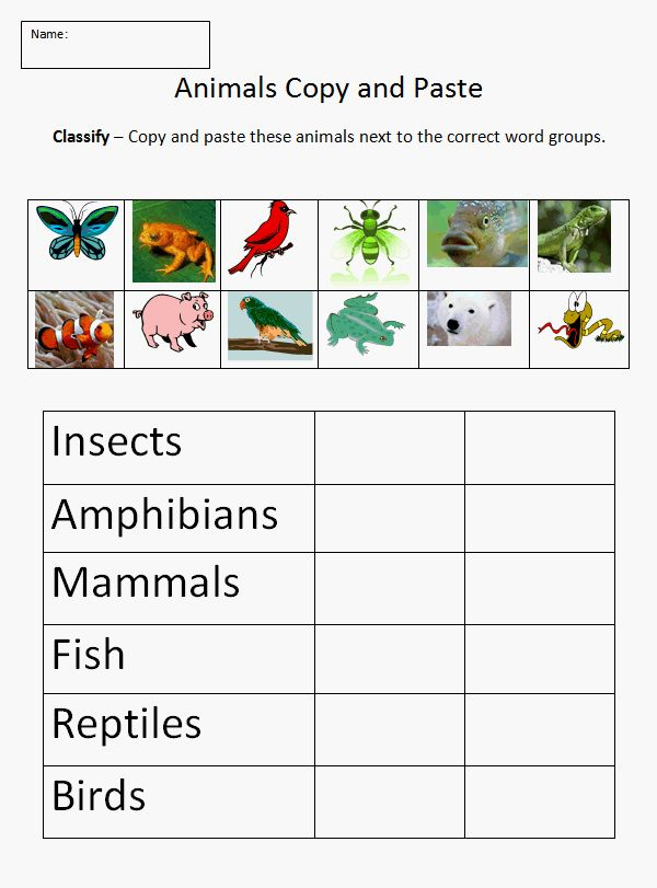 Copy and Paste - Classifying Animals | K-5 Computer Lab Technology Lesson Plans