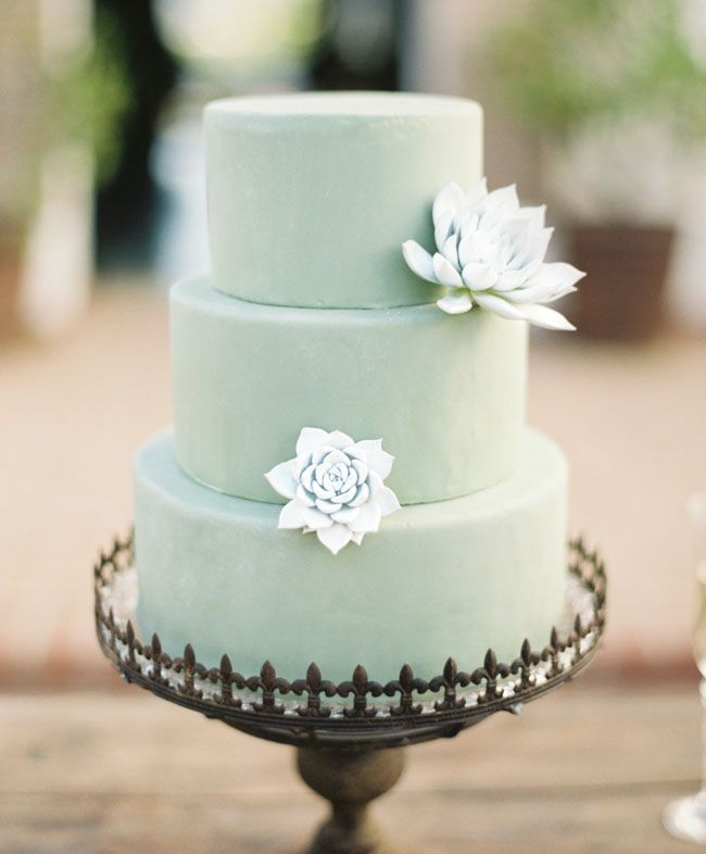 Pretty mint succulent cake