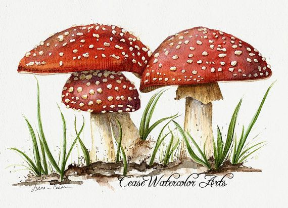 "Red mushrooms ""And Baby Makes Three"" Amanita muscaria - Watercolor giclee 8x10 print"