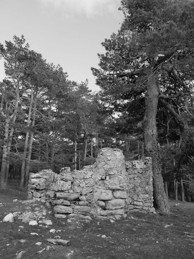 Restos de construción, quizás de la Guerra Civil en el Collado de la Gargantilla