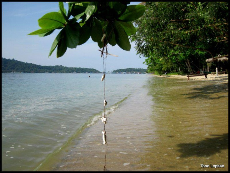 Tropical beach, Kho Chang.Thailand. TONE LEPSOES PICTURE