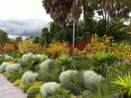 8 best images about australian botanic garden mt annan on for Garden design with native plants