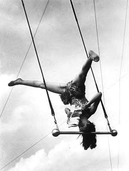 Pinito del Oro reading a newspaper on her trapeze Washington (c.1955)