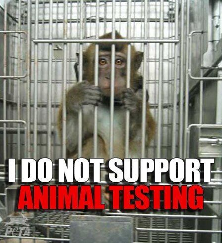stopping animal testing and vivisection by passing a bill against animal cruelty Now, this bill, the cruelty-free cosmetics act (bill s-214), is currently before the senate committee on social affairs, science and technology the bill, among many things, aims to amend the food and drugs act to protect animals from the horrors of animal testing specifically, the bill would forbid cosmetic.