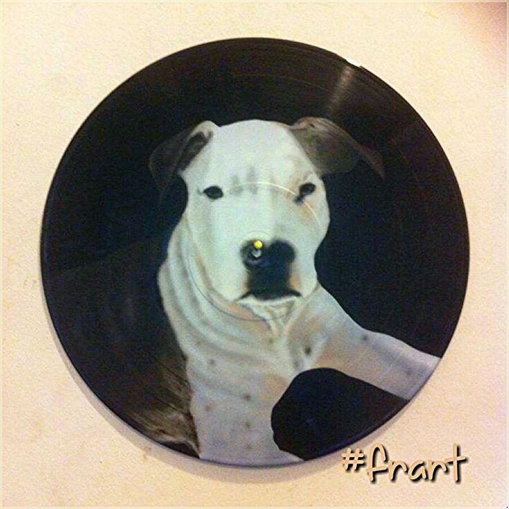 Dog Instagram arte.frart