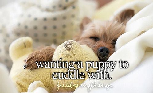 AHHH, omg yes! In the worst way. I wuv puppies.