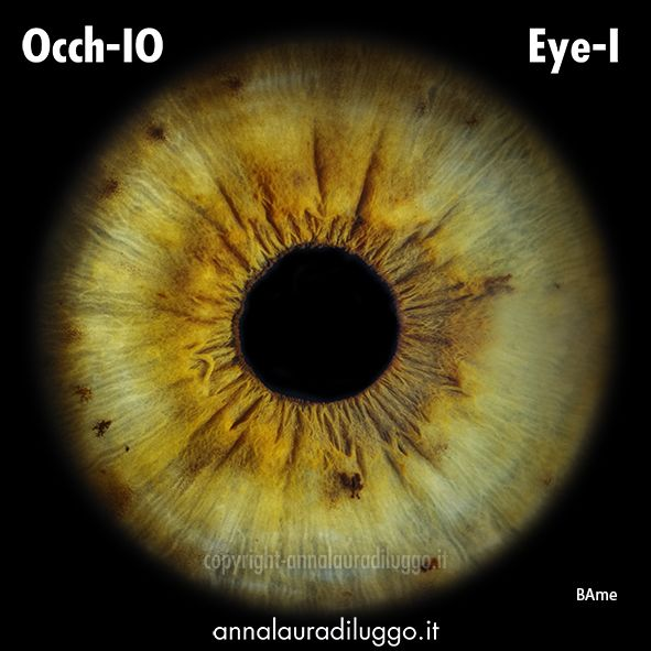Occh-Io  my eye an artist work made by Annalaura di Luggo a talented italian artist. would you have yours?