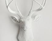 White Deer Head - The Templeton - White Resin Deer Head- White Deer Antlers Mounted- Faux Head Wall Mount. $104.99, via Etsy.