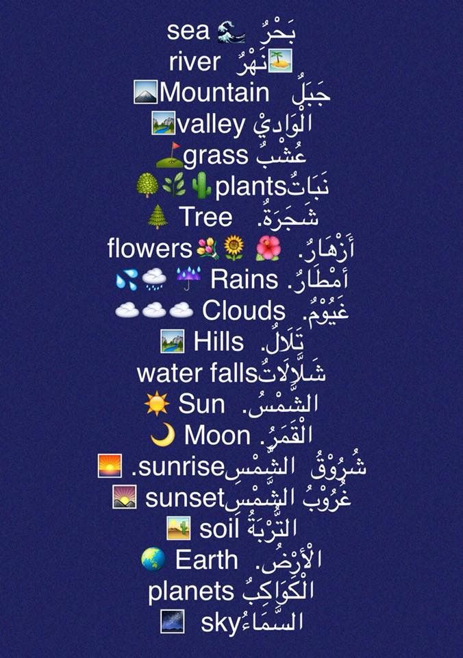 Learning Arabic Msa Fabiennem Learn Arabic Language Arabic Language Learn English Words