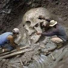 esqueletos gigantes humanos - Buscar con Google