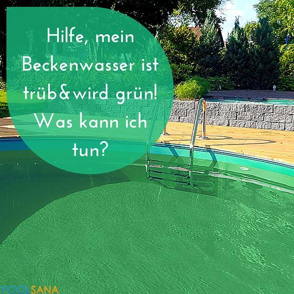 Plötzlich grünes Wasser? Wir helfen den lästigen Algenbefall loszuwerden. #pflege #algen #pool