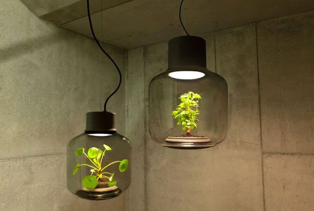 Een lamp is al lang niet meer enkel iets dat zorgt voor licht in huis, het is een volwaardig deel van je interieur. Deze bijzondere stukken vertellen allemaal iets over hun eigenaar.