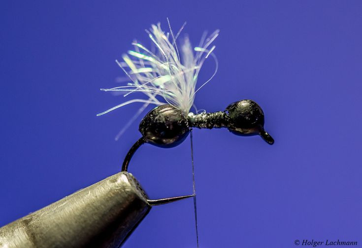 Winged Ant – by Holger Lachmann | | Hatches Fly Tying Magazine