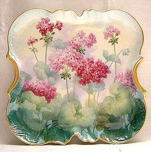 Paula Collins Studies  geranium tray