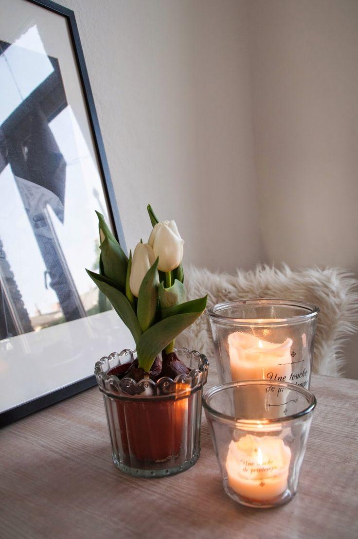ber ideen zu wei e tulpen auf pinterest. Black Bedroom Furniture Sets. Home Design Ideas