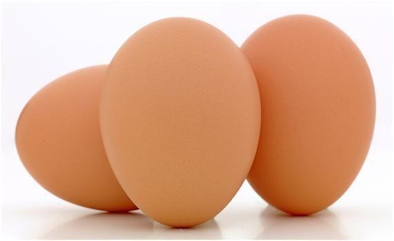 계란의 안전한 조리 방법