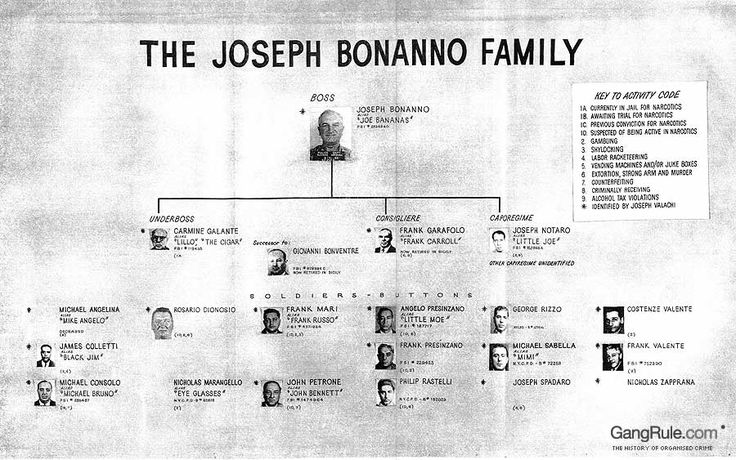 Joseph Bonanno Family Tree | This is the Bonanno family tree when Joseph Bonanno was Don. This tree ...