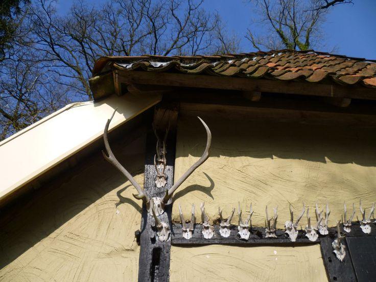 2014-03-02 Jachttrofeeen tegen een boerenschuur langs het Bornse voetpad
