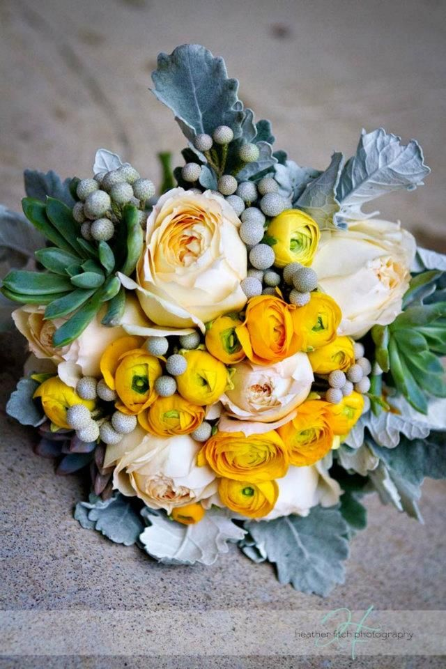 gray and yellow wedding flowers   garden roses, yellow ranunculos, dusty miller, succulents, silver brunia  Wedding flowers by Sophisticated Floral Designs. Portland, OR