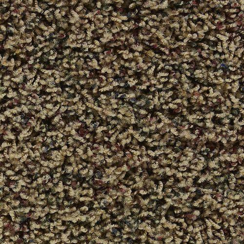 Best Citation Moselle Texture Frieze Carpet 12 Ft Wide At 400 x 300