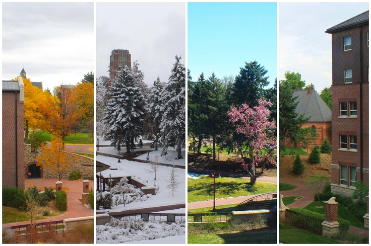 University of Denver seasons--LOVE