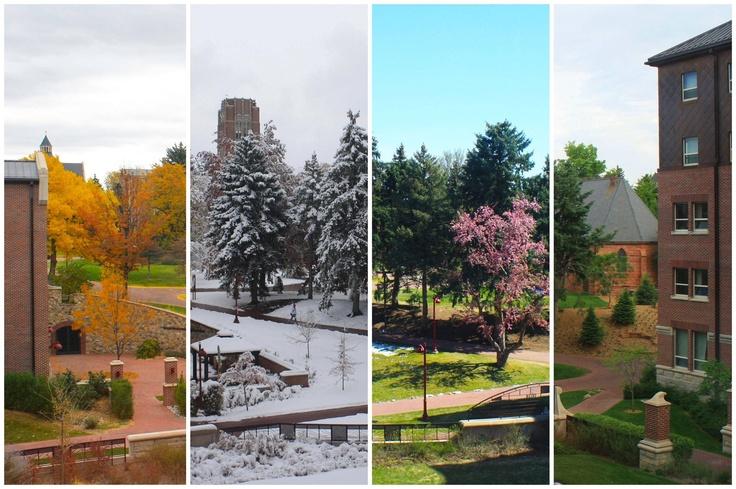 University of Denver seasons--LOVE
