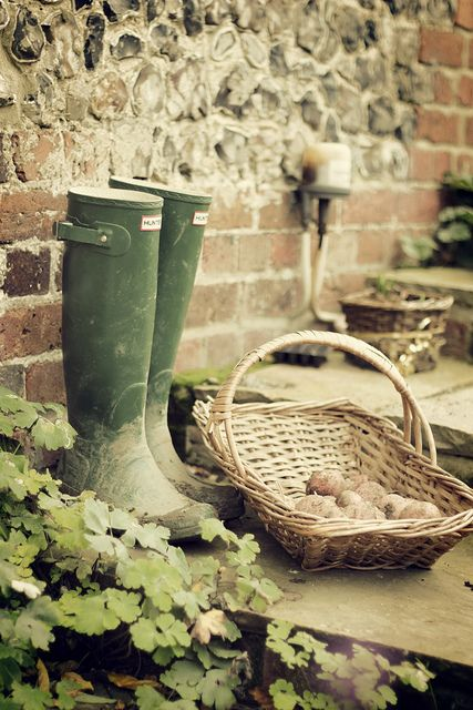 Hunter wellies helped someone get those root vegetables out of the ground, somewhere in the world. ;)