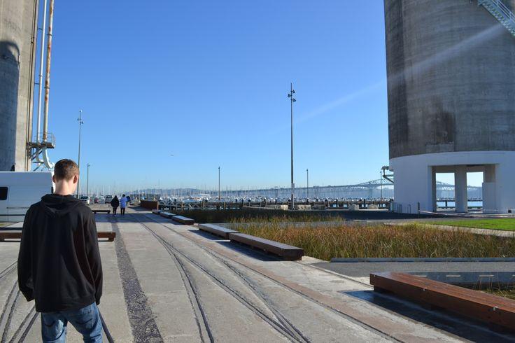 Docks Auckland 2012