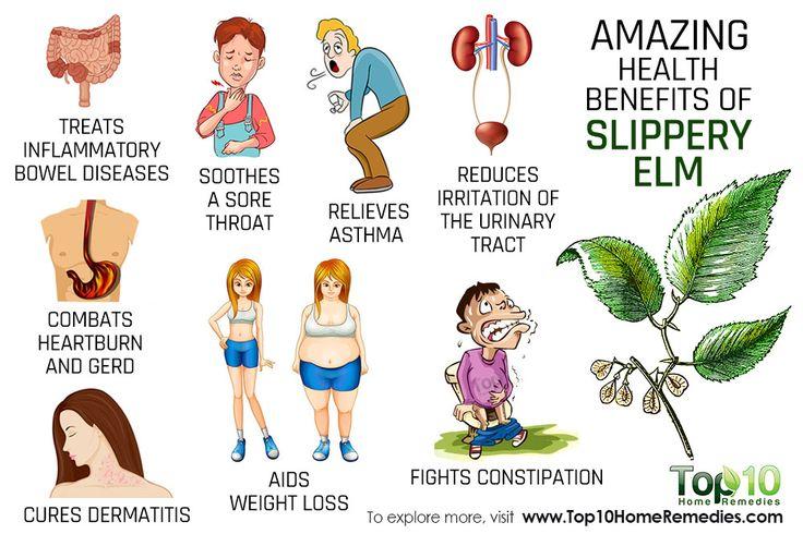 health benefits of slippery elm