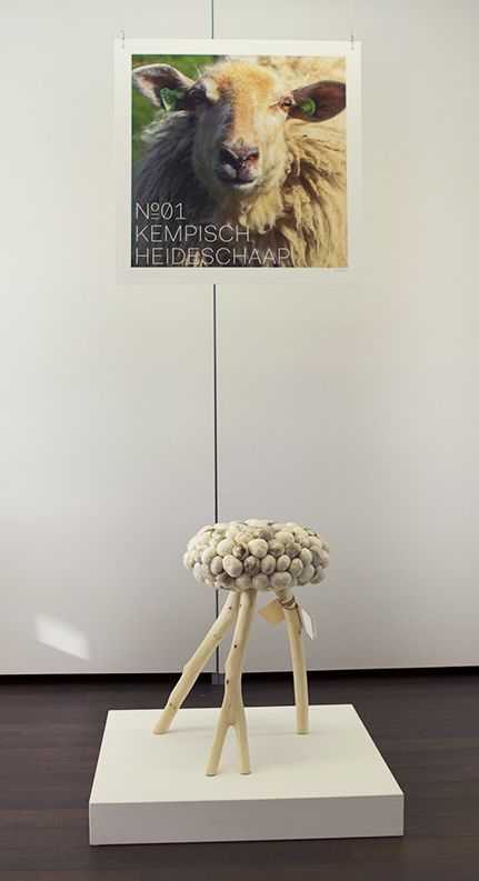 0304 EXPOSITION – KEMPISCH HEIDESCHAAP
