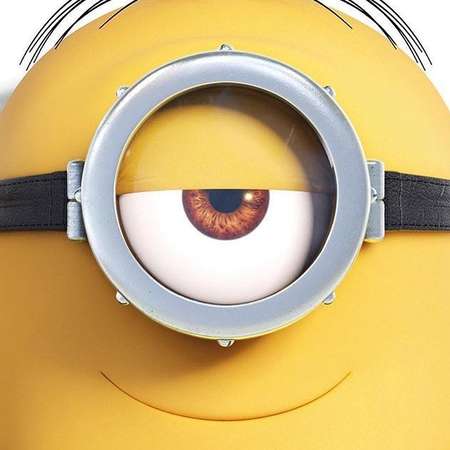 621 Best Images About Minions On Pinterest