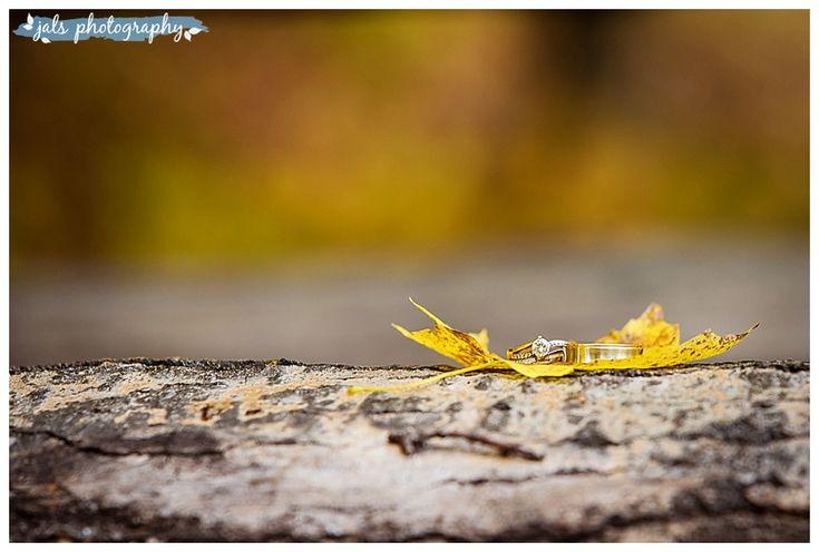 fall wedding photography, maple leaf, wedding rings, Madoc, O'Hara Mill