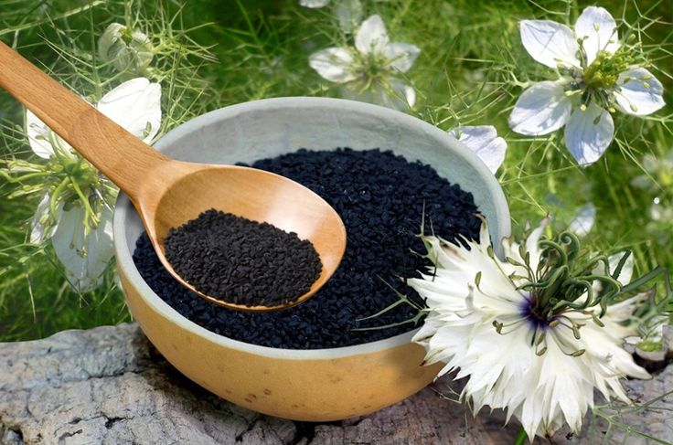 Treat Diabetes with black cumin seeds       (adsbygoogle = window.adsbygoogle || ).push({});      Black cumin seeds reduce the elevated blood glucose levels by triggering the insulin sensitivity & glucose uptake by the cells. Cumin seeds also obstruct the creation of advanced glycation end products (age) present in most diabetics – that often are the cause for complications.   #Black Cumin Seed Diabetes #Black Cumin Seed For Diabetes #Black Cumin Seed Oil Ben